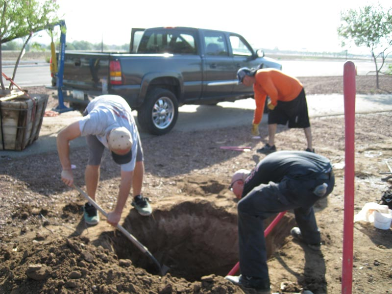 Hole for Tree Planting image